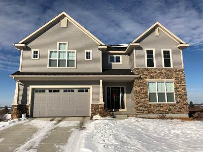 Verona Single Family Home For Sale: 234 Canterbury Pass