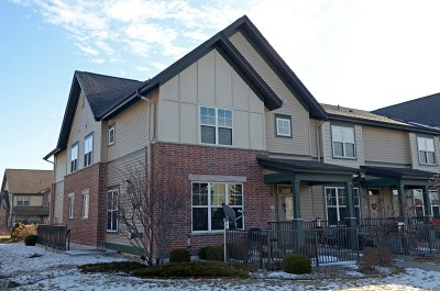 Verona Condo/Townhouse For Sale: 1137 Enterprise Dr