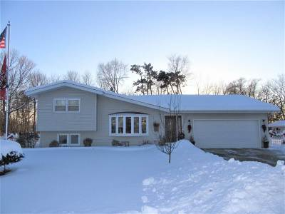 Green County Single Family Home For Sale: W547 Theresa Ct