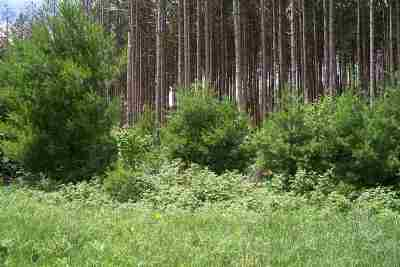 Adams WI Residential Lots & Land For Sale: $14,900