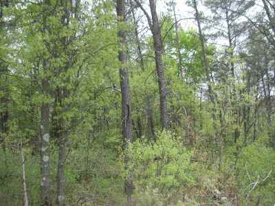Arkdale Residential Lots & Land For Sale: L7 Beaver Ave