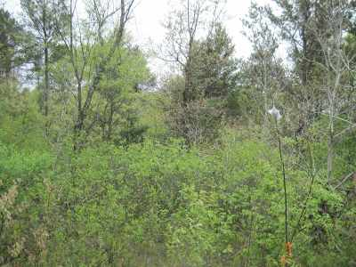 Arkdale Residential Lots & Land For Sale: L8 Beaver Ave