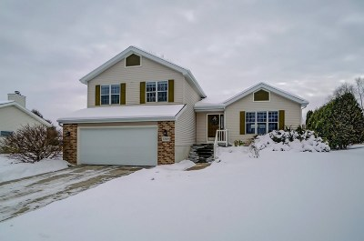 Madison Single Family Home For Sale: 3209 Country Grove Dr
