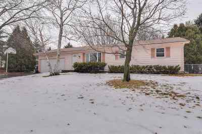 Sun Prairie Single Family Home For Sale: 1073 Jerico Ln