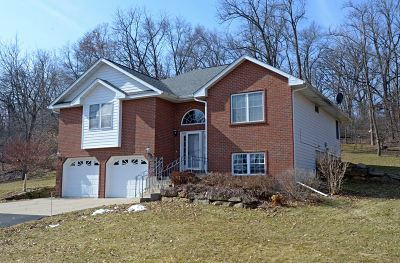 Iowa County Single Family Home For Sale: 3050 County Road K