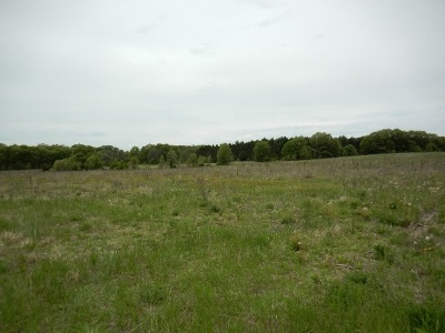Residential Lots & Land For Sale: L1 Hwy 73