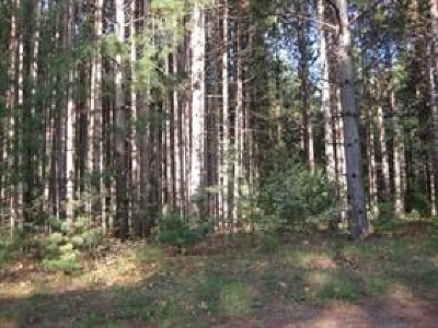 Wisconsin Dells Residential Lots & Land For Sale: L19 Jack Pine Ct