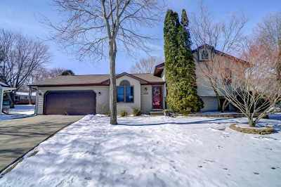 Sun Prairie Single Family Home For Sale: 1036 Villa Circle