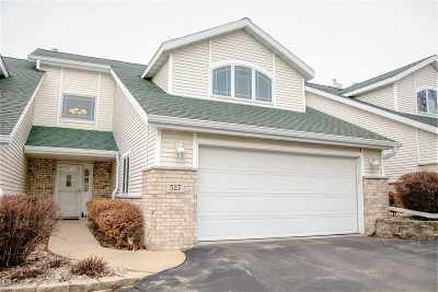 Cottage Grove Condo/Townhouse For Sale: 527 Nightingale Ln