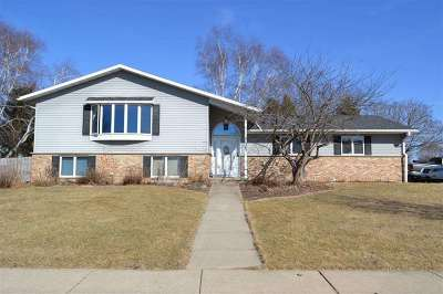 Dane County Single Family Home For Sale: 599 Riverview Dr
