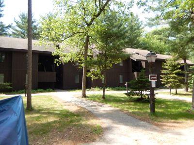 Wisconsin Dells Condo/Townhouse For Sale: 9 Spruce Tr #9