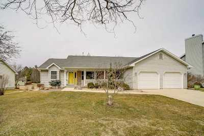 Cottage Grove Single Family Home For Sale: 311 Forreston Dr