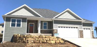 Mount Horeb WI Single Family Home For Sale: $419,900