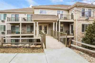 Dane County Condo/Townhouse For Sale: 7203 Mid Town Rd #212