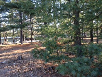 Friendship Residential Lots & Land For Sale: 2052 Maple St