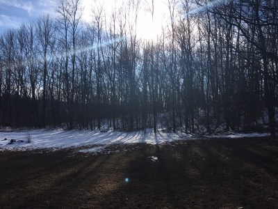 Middleton Residential Lots & Land For Sale: L20 Pine Cone Cir