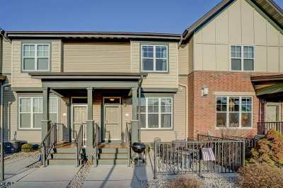 Verona Condo/Townhouse For Sale: 1151 Enterprise Dr