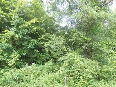 Adams WI Residential Lots & Land For Sale: $24,900