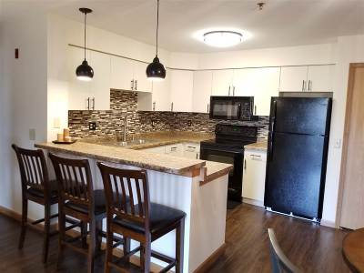 Waunakee Condo/Townhouse For Sale: 201 Kearney Way #208