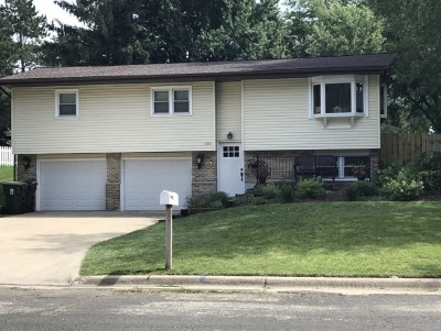 Dane County Single Family Home For Sale: 1025 Ring St