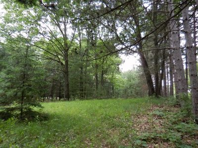 Residential Lots & Land For Sale: L28 Fern Dr