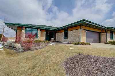 Verona Single Family Home For Sale: 9206 Windy Point