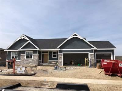 Sun Prairie Single Family Home For Sale: L12 Liatris Dr