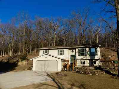 Iowa County Single Family Home For Sale: 3833 County Road K