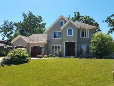 Stoughton Single Family Home For Sale: 3055 Shore View Dr
