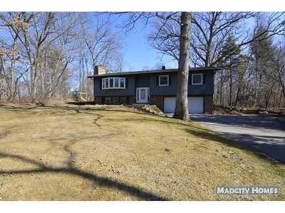Verona Single Family Home For Sale: 7590 Valley Woods Ct