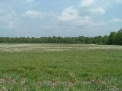 Residential Lots & Land For Sale: 70.5 Ac Hwy 33