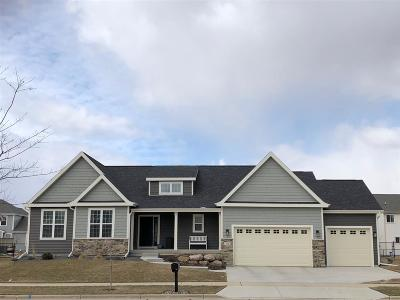 Sun Prairie Single Family Home For Sale: 278 Cottage Ct