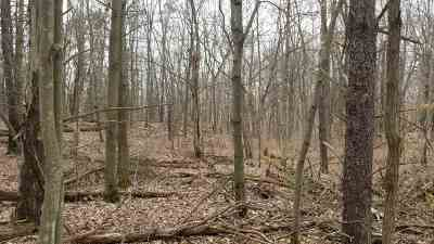 Wisconsin Dells Residential Lots & Land For Sale: 2.25 Ac Mariposa Ln