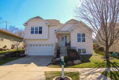 Madison Single Family Home For Sale: 4410 Honeypie Dr