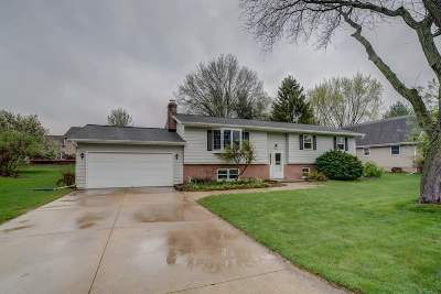 Sun Prairie Single Family Home For Sale: 795 Derby Dr