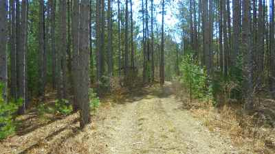 Residential Lots & Land For Sale: 1330 Hwy 13
