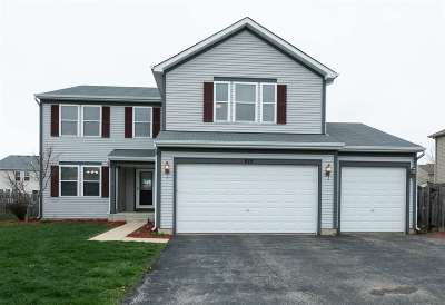 Walworth County Single Family Home For Sale: 919 N Pheasant Way
