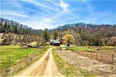 Iowa County Single Family Home For Sale: 2971 Hunter Hollow Rd