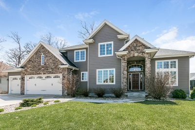 Stoughton Single Family Home For Sale: 3067 Shore View Dr