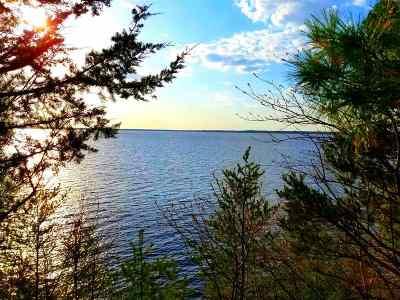 Arkdale Residential Lots & Land For Sale: L9 Badger Ct