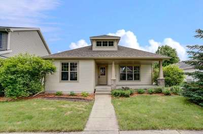 Dane County Single Family Home For Sale: 737 Copernicus Way