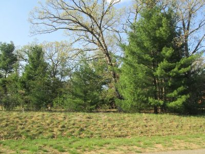 Arkdale Residential Lots & Land For Sale: L15 S Czech Ct