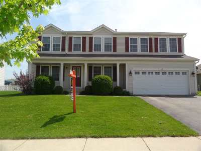 Walworth County Single Family Home For Sale: 225 Ash Ln