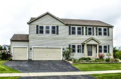 Walworth County Single Family Home For Sale: 196 S Ash Ln