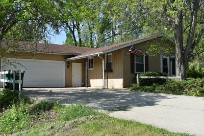 Rock County Single Family Home For Sale: 207 Dorow Ave