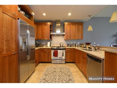 Dane County Condo/Townhouse For Sale: 309 W Washington Ave #615