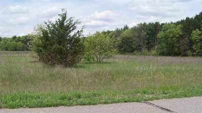 Wisconsin Dells Residential Lots & Land For Sale: L8 13th Ave