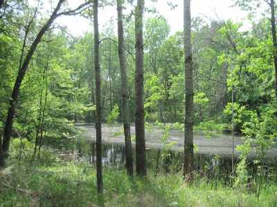 Friendship Residential Lots & Land For Sale: 5 Ac 15th Ln