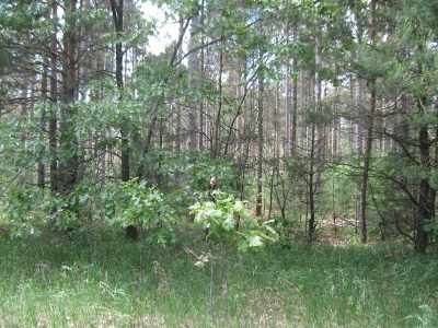 Friendship Residential Lots & Land For Sale: 10 Ac 4th Ave
