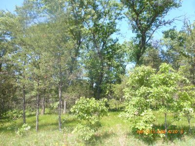 Arkdale Residential Lots & Land For Sale: 3.09 Ac 15th Ave